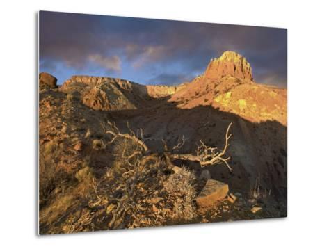 Red Mesa Near Abiquiu at Sunset, New Mexico, Usa-Tim Fitzharris-Metal Print