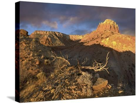 Red Mesa Near Abiquiu at Sunset, New Mexico, Usa-Tim Fitzharris-Stretched Canvas Print
