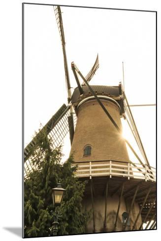 Netherlands, Holland-Emily Wilson-Mounted Photographic Print