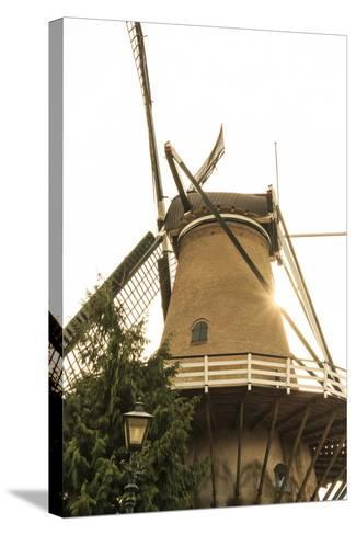 Netherlands, Holland-Emily Wilson-Stretched Canvas Print
