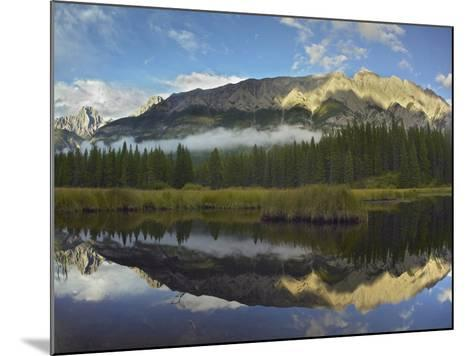 Opal Range, Kananaskis Country, Alberta, Canada-Tim Fitzharris-Mounted Photographic Print