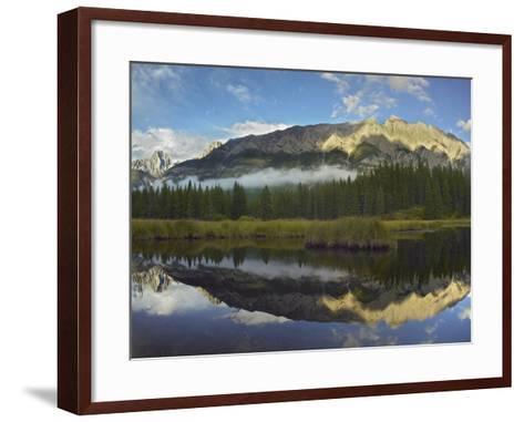 Opal Range, Kananaskis Country, Alberta, Canada-Tim Fitzharris-Framed Art Print