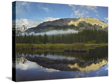 Opal Range, Kananaskis Country, Alberta, Canada-Tim Fitzharris-Stretched Canvas Print