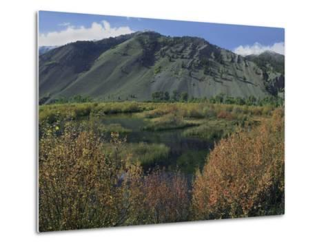 Boulder Mountains and Trail Creek Beaver Pond in Autumn, Idaho, Usa-Tim Fitzharris-Metal Print