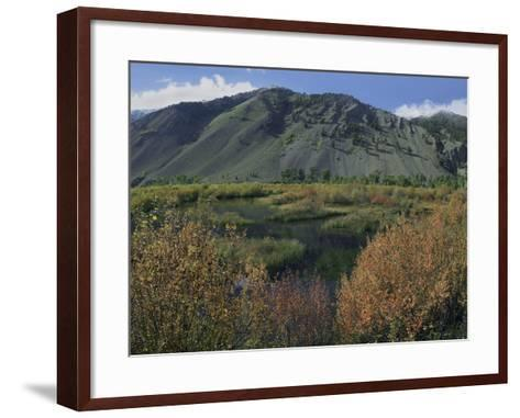 Boulder Mountains and Trail Creek Beaver Pond in Autumn, Idaho, Usa-Tim Fitzharris-Framed Art Print