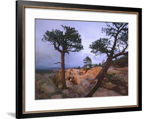 Storm over El Malpais National Monument, New Mexico, Usa-Tim Fitzharris-Framed Art Print