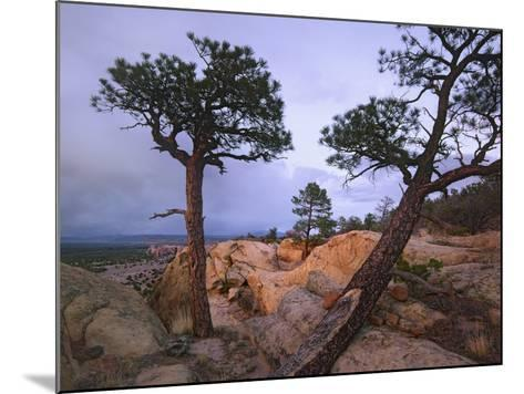 Storm over El Malpais National Monument, New Mexico, Usa-Tim Fitzharris-Mounted Photographic Print