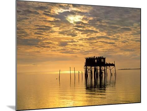 Sunset over Pelicans Perched on a Shack, Cedar Key, Florida, Usa-Tim Fitzharris-Mounted Photographic Print