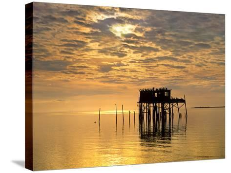 Sunset over Pelicans Perched on a Shack, Cedar Key, Florida, Usa-Tim Fitzharris-Stretched Canvas Print