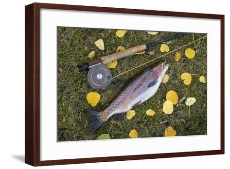 Utah, Fishlake National Forest. Rainbow Trout and Fly Rod-Jaynes Gallery-Framed Art Print