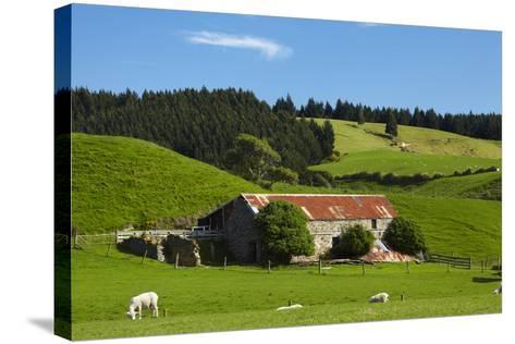 Old Stone Barn and Farmland, Near Taieri Mouth, Dunedin, Otago, South Island, New Zealand-David Wall-Stretched Canvas Print