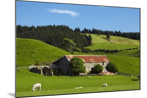 Old Stone Barn and Farmland, Near Taieri Mouth, Dunedin, Otago, South Island, New Zealand-David Wall-Mounted Photographic Print