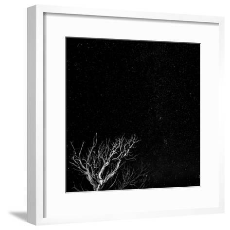 Utah, Capitol Reef National Park. Dead Tree and Night Sky-Jaynes Gallery-Framed Art Print