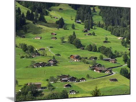 Switzerland, Bern Canton, Grindelwald, Apline Farming Community-Jamie And Judy Wild-Mounted Photographic Print