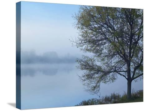 Dense Fog on Lackawanna Lake, Lackawanna State Park, Pennsylvania, Usa-Tim Fitzharris-Stretched Canvas Print