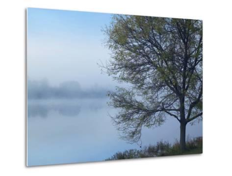 Dense Fog on Lackawanna Lake, Lackawanna State Park, Pennsylvania, Usa-Tim Fitzharris-Metal Print