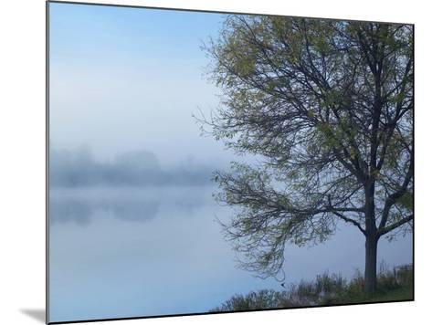 Dense Fog on Lackawanna Lake, Lackawanna State Park, Pennsylvania, Usa-Tim Fitzharris-Mounted Photographic Print