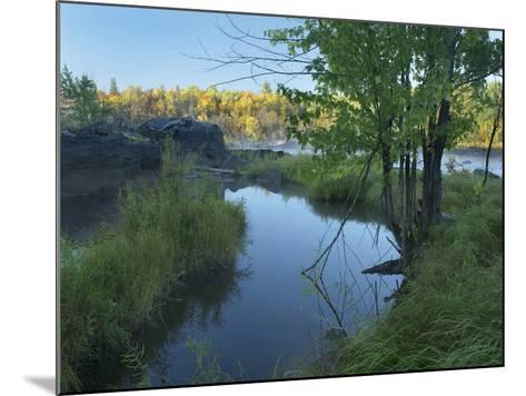 Small Pool Next to a River, Jay Cooke State Park, Minnesota-Tim Fitzharris-Mounted Photographic Print