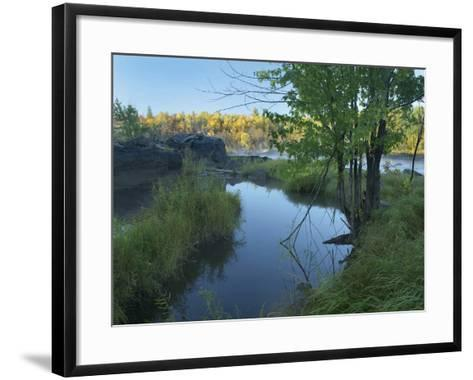 Small Pool Next to a River, Jay Cooke State Park, Minnesota-Tim Fitzharris-Framed Art Print