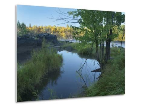 Small Pool Next to a River, Jay Cooke State Park, Minnesota-Tim Fitzharris-Metal Print