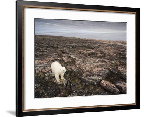 Canada, Repulse Bay-Paul Souders-Framed Art Print