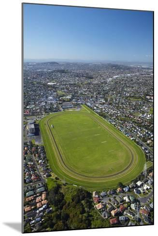 Avondale Racecourse, Auckland, North Island, New Zealand-David Wall-Mounted Photographic Print