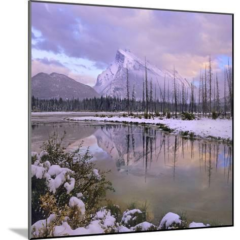 Mount Rundle and Tunnel Mountain, Banff National Park, Alberta, Canada-Tim Fitzharris-Mounted Photographic Print