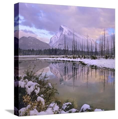 Mount Rundle and Tunnel Mountain, Banff National Park, Alberta, Canada-Tim Fitzharris-Stretched Canvas Print