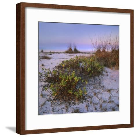 Bowman's Beach, Sanibel Island, Florida, Usa-Tim Fitzharris-Framed Art Print