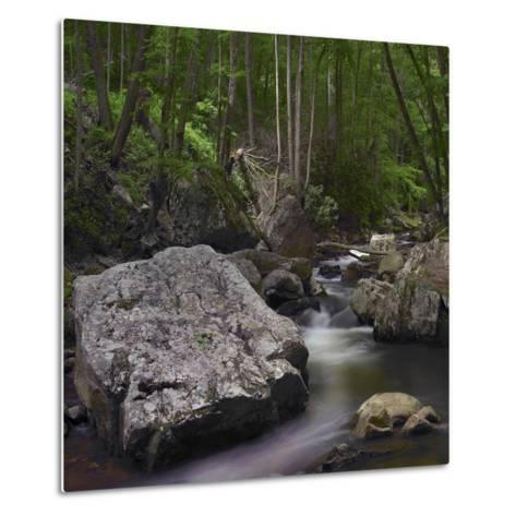 Little Stony Creek, Jefferson National Forest, Virginia-Tim Fitzharris-Metal Print