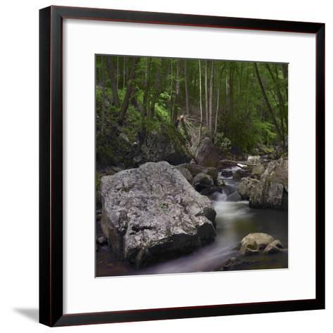 Little Stony Creek, Jefferson National Forest, Virginia-Tim Fitzharris-Framed Art Print