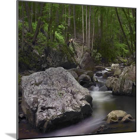 Little Stony Creek, Jefferson National Forest, Virginia-Tim Fitzharris-Mounted Photographic Print