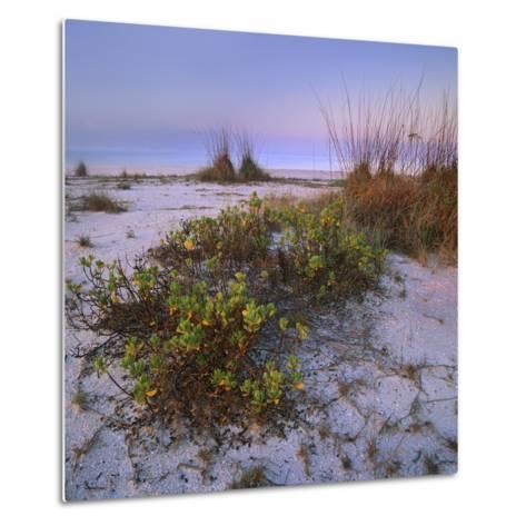 Bowman's Beach, Sanibel Island, Florida, Usa-Tim Fitzharris-Metal Print