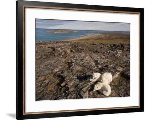 Polar Bear Resting with Cubs in Hills Above,Canada-Paul Souders-Framed Art Print