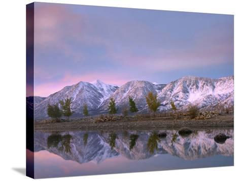 Carson Range Reflected in Carson River at Sunset, Nevada, Usa-Tim Fitzharris-Stretched Canvas Print