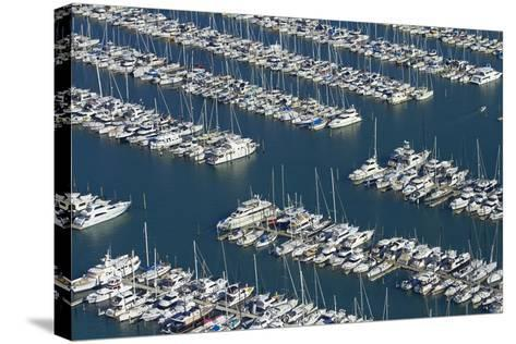 Westhaven Marina, Auckland, North Island, New Zealand-David Wall-Stretched Canvas Print