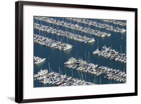 Westhaven Marina, Auckland, North Island, New Zealand-David Wall-Framed Art Print