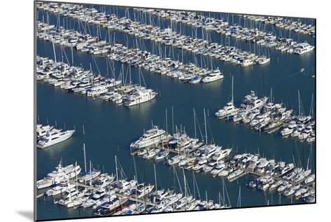 Westhaven Marina, Auckland, North Island, New Zealand-David Wall-Mounted Photographic Print