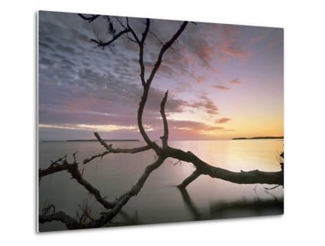 Flamingo Bay, Everglades National Park, Florida, Usa-Tim Fitzharris-Metal Print