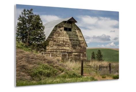 Washington State, Palouse, Whitman County-Alison Jones-Metal Print