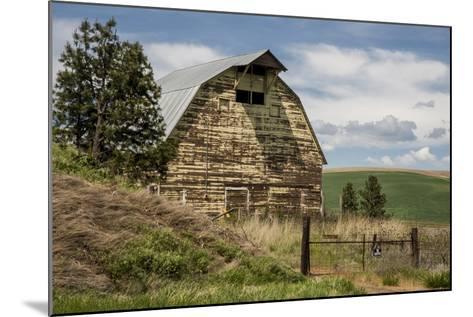 Washington State, Palouse, Whitman County-Alison Jones-Mounted Photographic Print