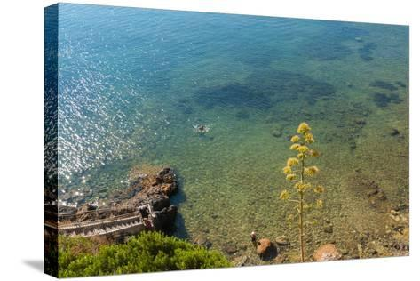 Cliffs of Talamone, Grosseto Province, Maremma, Tuscany, Italy-Nico Tondini-Stretched Canvas Print