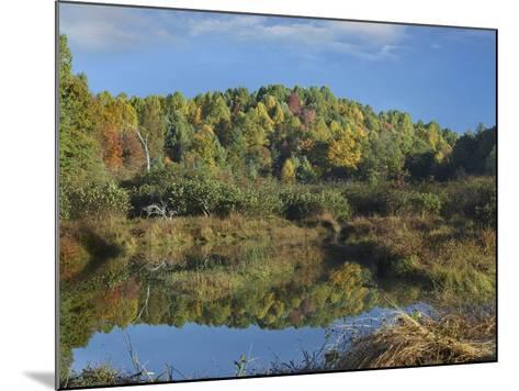 Fall Foliage at Rakes Mill Pond, Blue Ridge Parkway, Virginia-Tim Fitzharris-Mounted Photographic Print