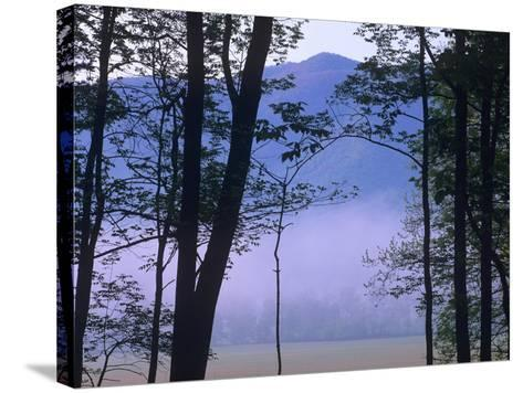 Fog over Cades Cove, Great Smokey Mountains National Park, Tennessee, Usa-Tim Fitzharris-Stretched Canvas Print