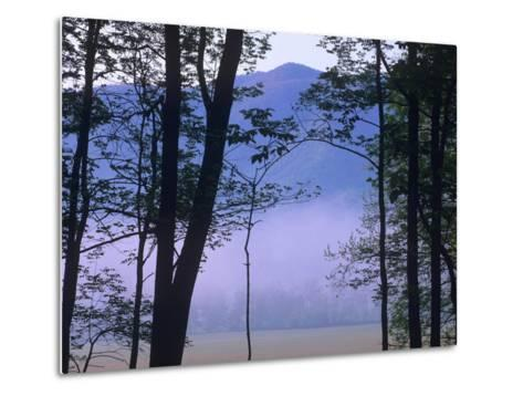 Fog over Cades Cove, Great Smokey Mountains National Park, Tennessee, Usa-Tim Fitzharris-Metal Print