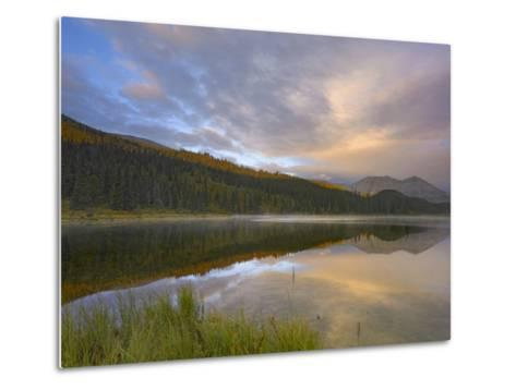 Northern Rocky Mountain Provincial Park, British Columbia, Canada-Tim Fitzharris-Metal Print