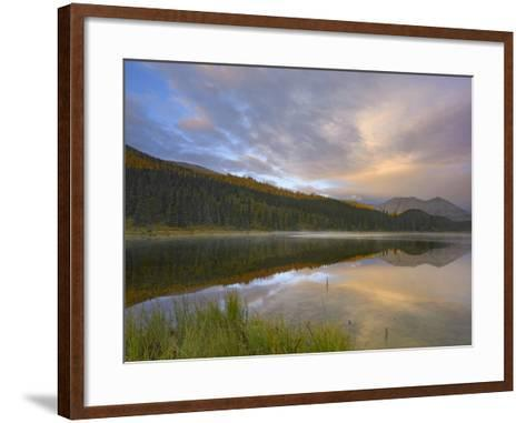 Northern Rocky Mountain Provincial Park, British Columbia, Canada-Tim Fitzharris-Framed Art Print