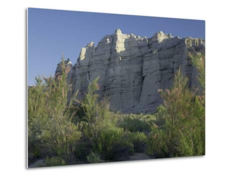 Plaza Blanca Near Abiquiu, New Mexico, Usa-Tim Fitzharris-Metal Print