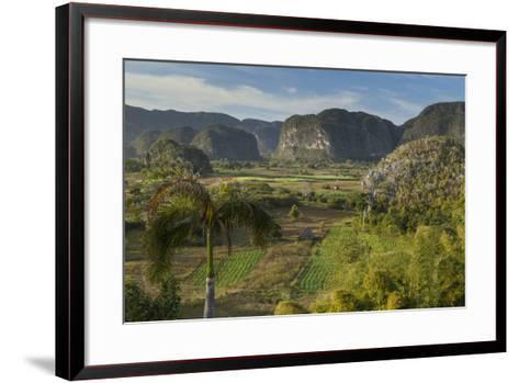 Cuba, Vinales. a View Looking over the Rich Farmland of the Valley-Brenda Tharp-Framed Art Print