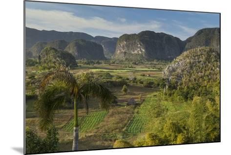 Cuba, Vinales. a View Looking over the Rich Farmland of the Valley-Brenda Tharp-Mounted Photographic Print